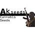 nasiona marihuany, konopi, cannabis, seeds, seed, seedbank, producent, sklep, akseeds